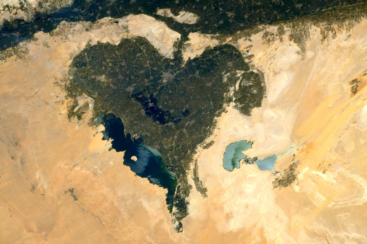 Oasis du Fayoum, Égypte – © Thomas Pesquet